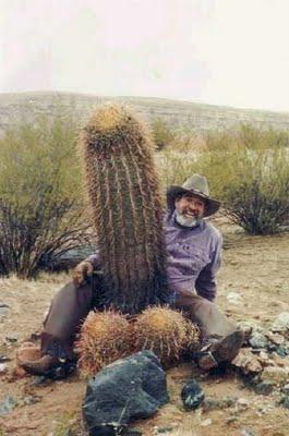 cactus-07