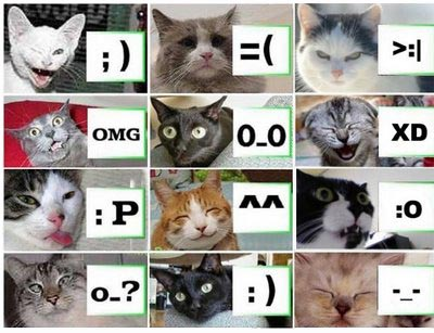 Cat Smileys