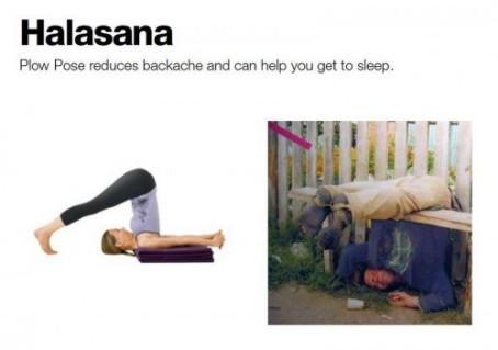yoga_06-500x351