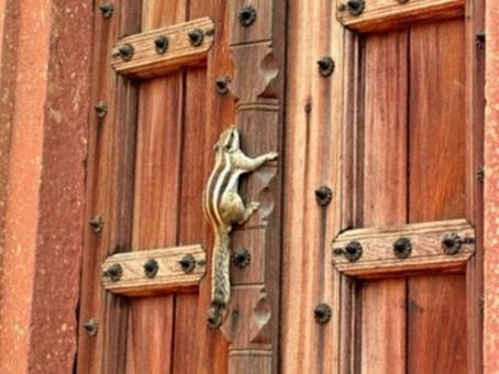 manijas de puertas3