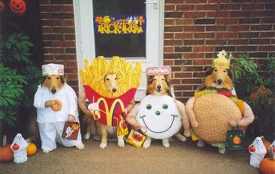 dog-costume-ideas-05