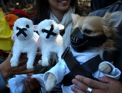 dog-costume-ideas-08
